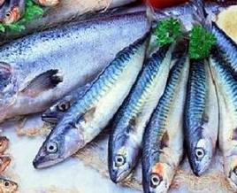 Sagra del pesce azzurro di Pioppi, rinnovata la tradizione