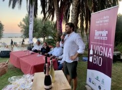 Pioppi, Premio Vigna Bio: i vincitori dell'edizione 2020